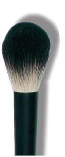 ROUGE/POWDER BRUSH